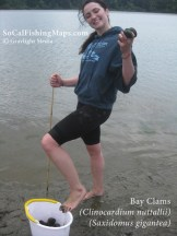 A successful clamming outing in the bay.
