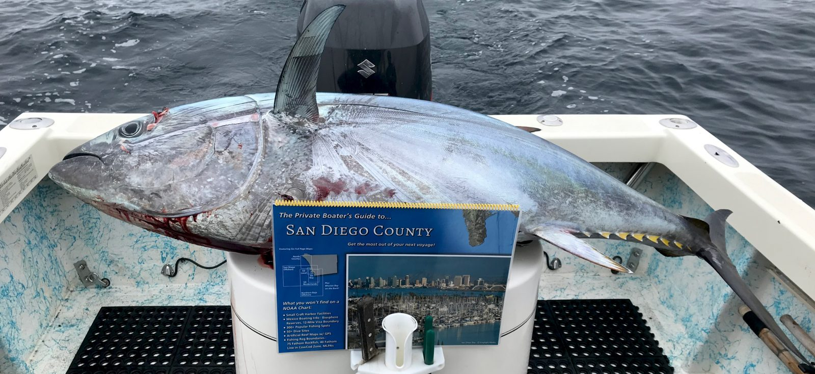 Bluefin tuna and boater's guide