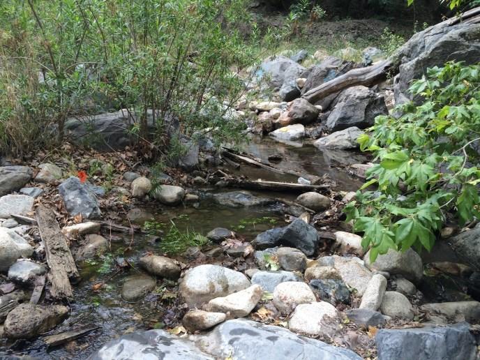 Trabuco Creek