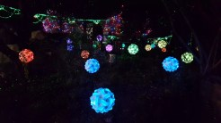 A garden walk of light and lasers