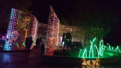 Holiday Light Wall