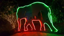 Elephant outline in Holiday Light Wall