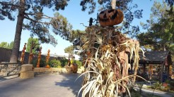 Pumpkin scarecrows looks like they came out of a Tim Burton movie or R.L. Stine's Goosebump series