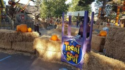 Be sure not to miss out on any Treat Spot for your candy