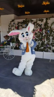 The Easter Bunny's cheeks are sore from smiling for the camera