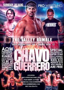 AOW 8-3-14 flyer