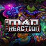 IWL Mad reaction 12-13-14 flyer