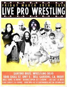 Santino 3-20-15 flyer