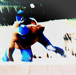 Lizmark vs. Blue Panther