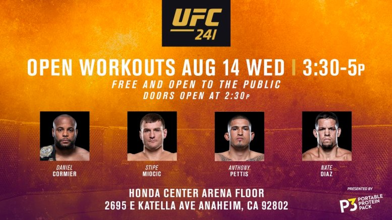 UFC 241 Fight Week