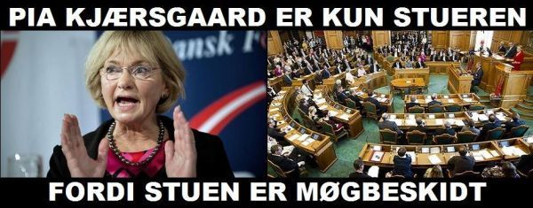 Pia Kjærsgaard er kun stueren ... Fordi stuen er møgbeskidt.