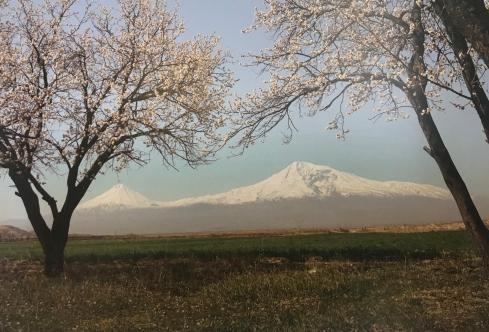 Musée d'art d'Erevan (Yerevan) : le mont Ararat peint par un artiste du pays.