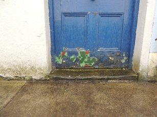 blue door westport