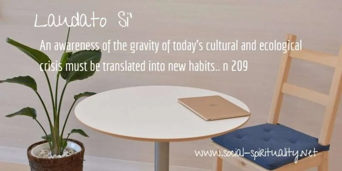 "Laudato Si' Week quote ""An awareness of the gravity of today's cultural and ecological crisis must be translated into new habits."" n 209"
