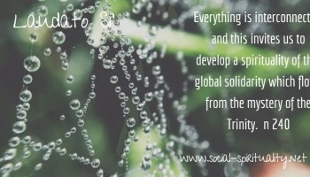 """Laudato Si' Week quote """"Everything is interconnected, and this invites us to develop a spirituality of that global solidarity which flows from the mystery of the Trinity."""" n 240"""