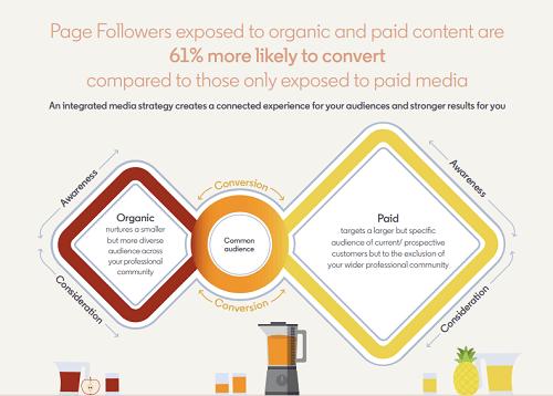 organic and paid strategies