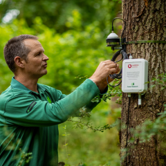 How IoT technology helps forest conservation in India