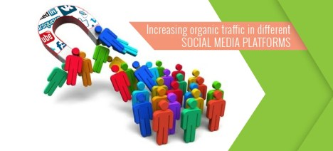Tips to Increase Social Media Organic traffic