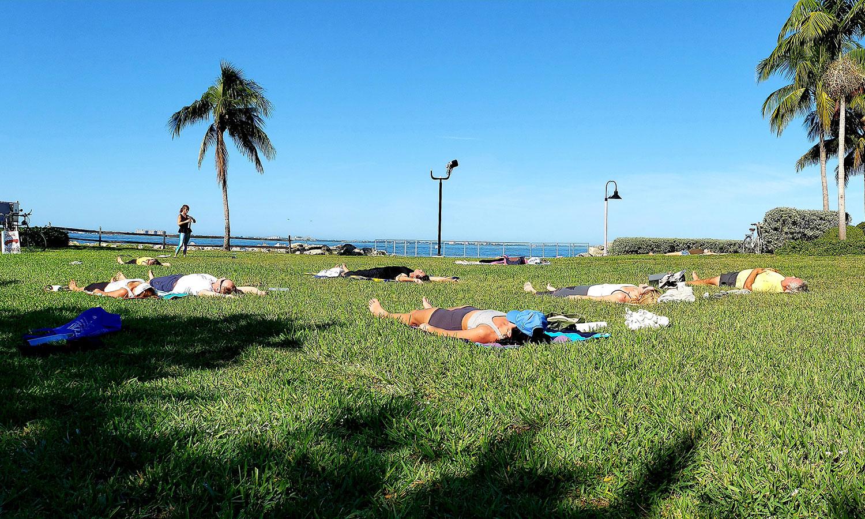 Bay Park Yoga at Van Wezel
