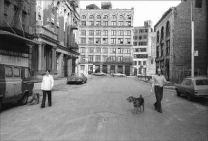 dogwalk_std