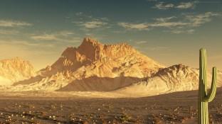 Sonoran-Desert-Image