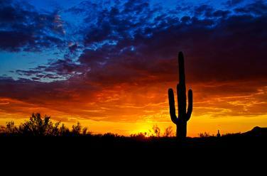sonoran-style-sunset-saija-lehtonen