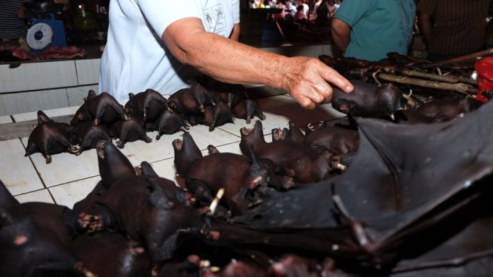February 8, 2020 - a vendor selling bats at the Tomohon Extreme Meat market on Sulawesi island. Bats, rats and snakes are still being sold as food, despite calls to take them off the menu over fears of Covid-19 link.
