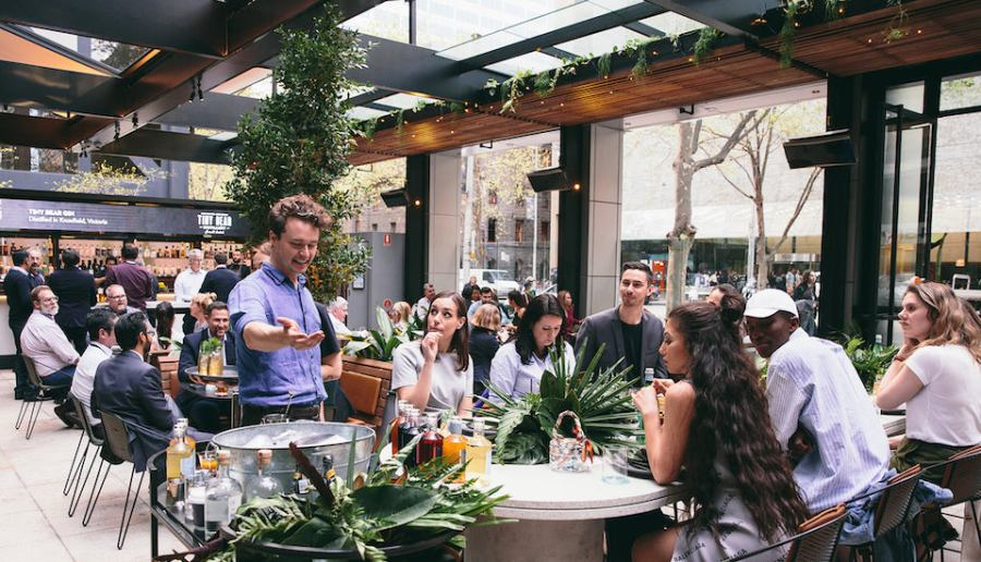 tables of patrons seated at Bourke street green restaurant in Melbourne cbd with open roof and hanging plants