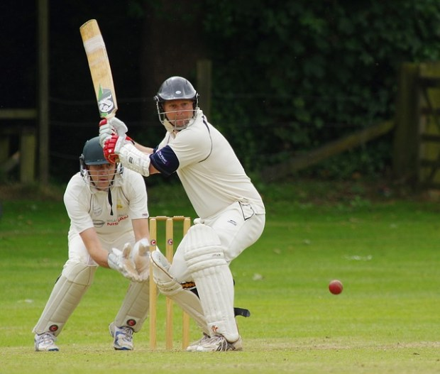 cricket-724617_640