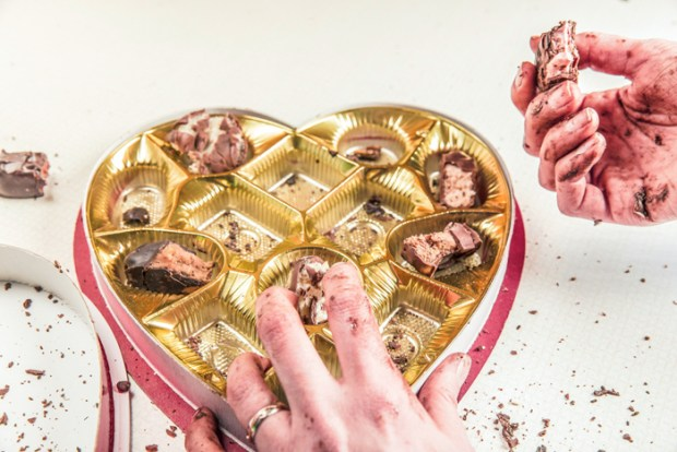 food-eating-candy-chocolate-4644