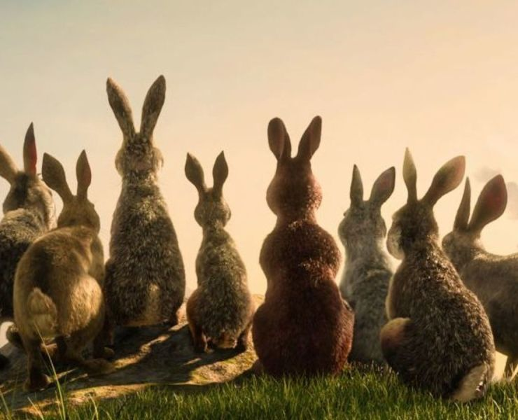James McAvoy Leads a Star-Studded Rabbit Rebellion in the First Trailer for Watership Down 21