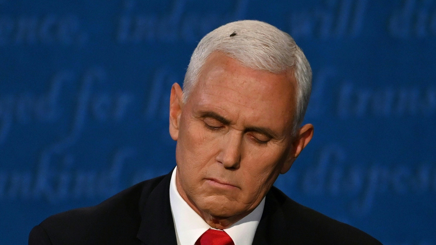 Fly on Mike Pence's Head