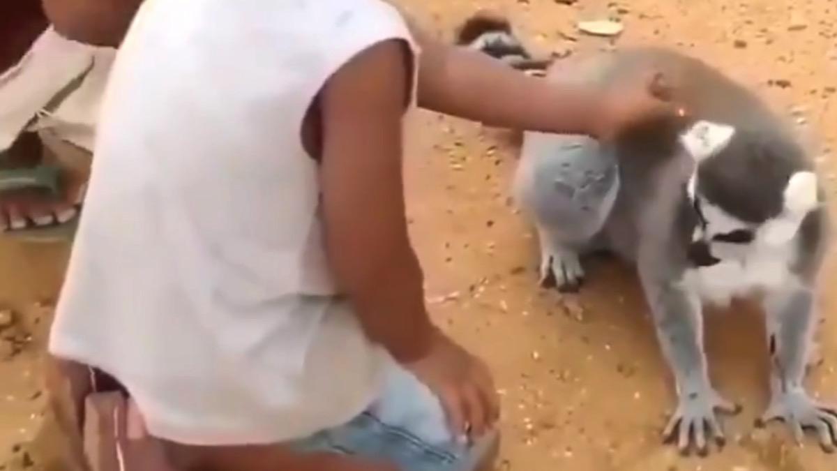 scratch my butt