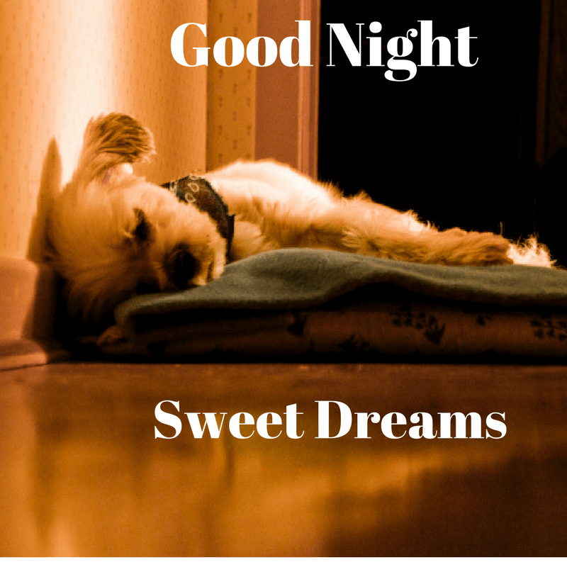 Good night image, graphics, HD wallpapers for Whatsapp