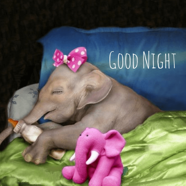 goodnight HD image for whatsapp|free download