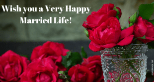 happy married life images