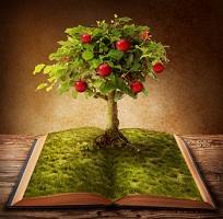 Storytelling-Baum