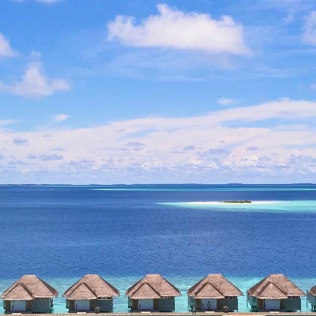 Social Media Gold Week I Social media Coaching Malediven