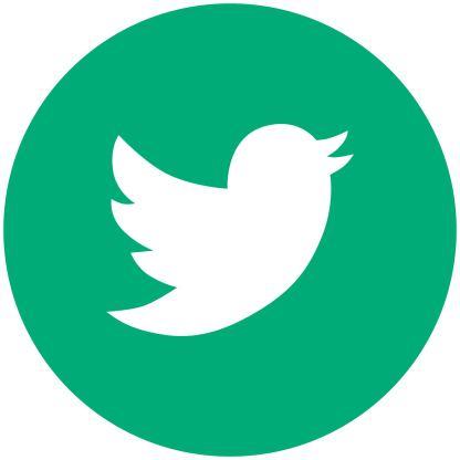 Twitter - Mint Social Media Icon
