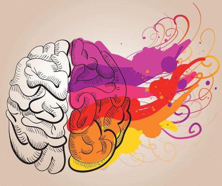 formación-musical-función-ejecutiva-cerebro