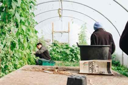 man wearing black jacket inside the greenhouse