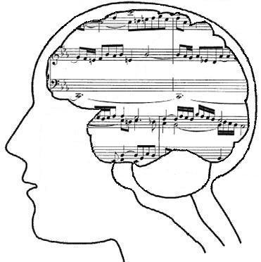 Does music just entertain us, or does it actually help us survive?