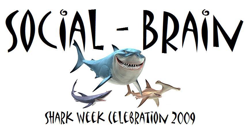SB Shark Week