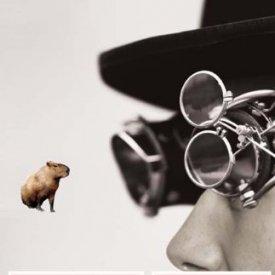 Dominic Pettman (2011) — Human Error: Species-Being and Media Machines