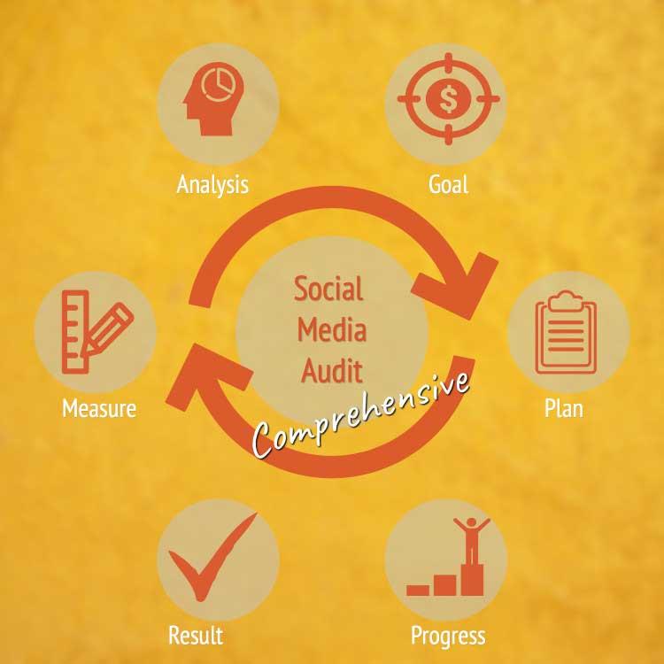 comprehensive social media audit