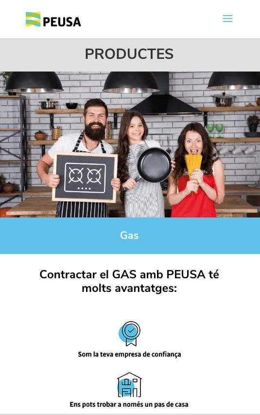 GAS Peusa