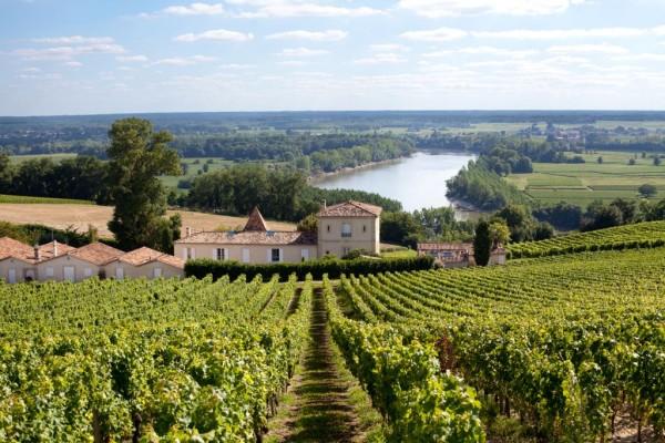 Chateau Biac Cadillac Cotes de Bordeaux Garonne River Vineyard View over the restored winery buildings Social Vignerons