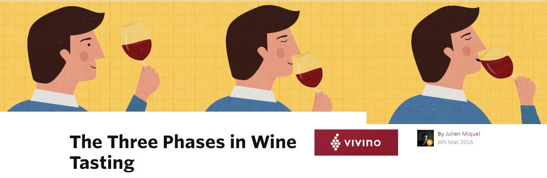 Vivino Wine Knowledge The Three phases in Wine Tasting