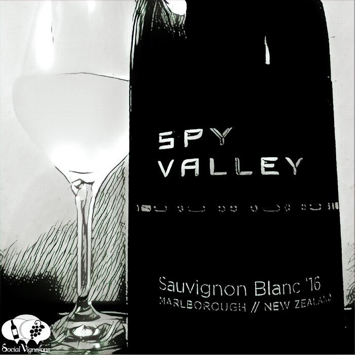 spay-valley-wines-sauvignon-blanc-marlborough-new-zealand-artistic-black-and-white-social-vignerons