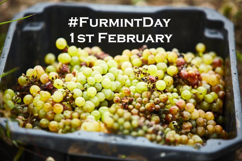 Furmint on the World Stage – International Furmint Day